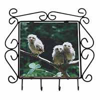 Baby Owls on Branch Wrought Iron Key Holder Hooks Gift Idea