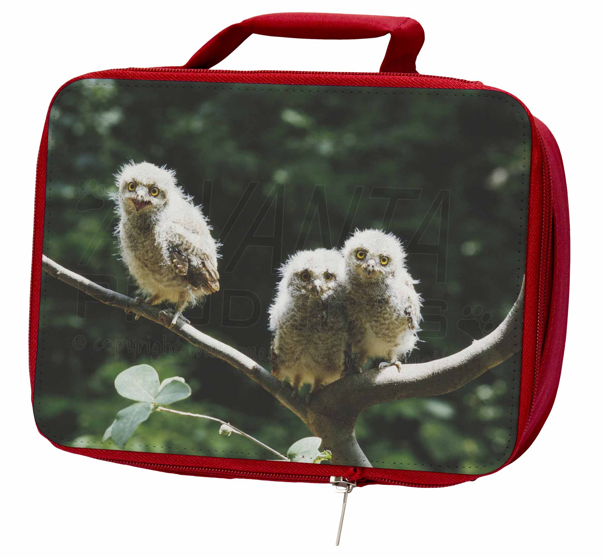 Baby Owls on Branch Insulated School Red School Insulated Lunch Box/Picnic Bag, AB-2LBR b8b19c