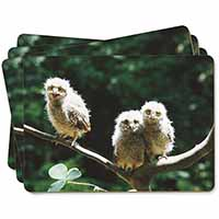 Baby Owls on Branch Picture Placemats in Gift Box