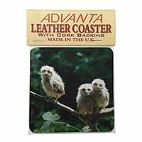 Baby Owls on Branch Single Leather Photo Coaster Animal Breed Gift