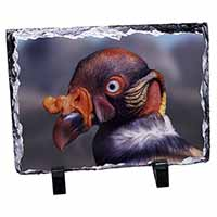 King Vulture Bird of Prey Photo Slate Christmas Gift Ornament