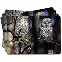 Stunning Owl in Tree Picture Placemats in Gift Box