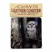 Stunning Owl in Tree Single Leather Photo Coaster Animal Breed Gift