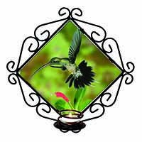 Green Hermit Humming Bird Wrought Iron Wall Art Candle Holder Gift