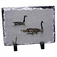 Geese+Goslings in Heavy Rain Photo Slate Photo Ornament Gift