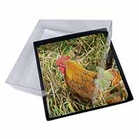 4x Hen in Straw Picture Table Coasters Set in Gift Box