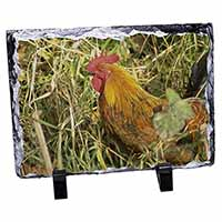 Hen in Straw Photo Slate Photo Ornament Gift
