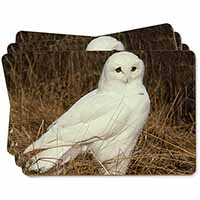 White Barn Owl Picture Placemats in Gift Box