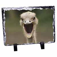 Ostritch Photo Print Photo Slate Christmas Gift Idea