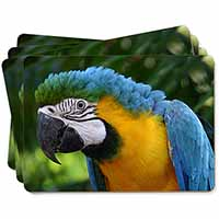 Blue+Gold Macaw Parrot Picture Placemats in Gift Box