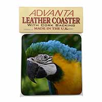 Blue+Gold Macaw Parrot Single Leather Photo Coaster Perfect Gift