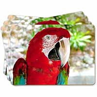 Green Winged Red Macaw Parrot Picture Placemats in Gift Box
