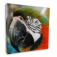 "Face of a Macaw Parrot 12""x12"" Wall Art Canvas Decor, Picture Print"