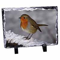 Robin on Snow Wall Photo Slate Photo Ornament Gift