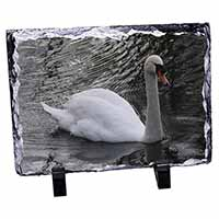 Beautiful Swan Photo Slate Photo Ornament Gift