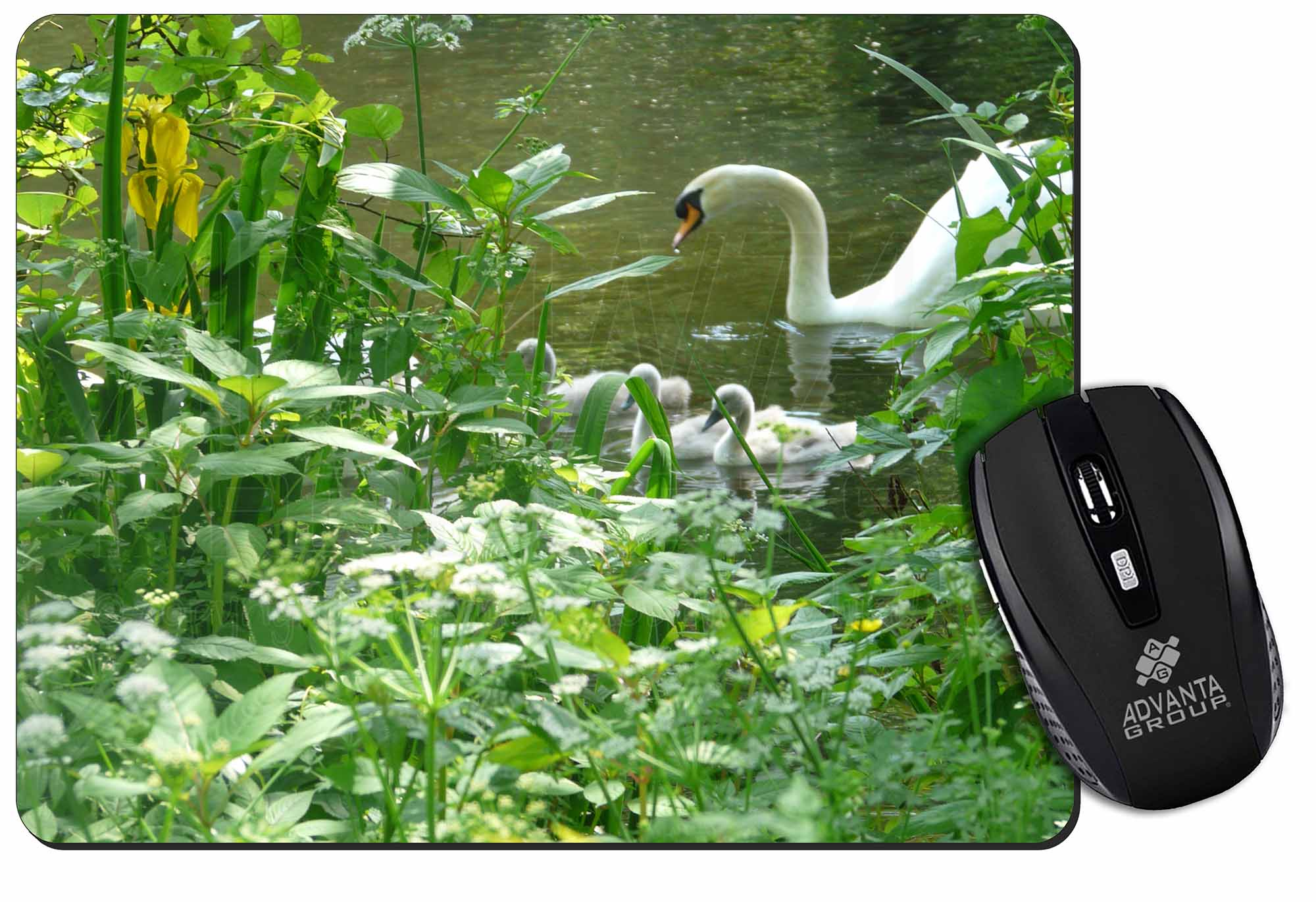 Pretty Bird Pink Mum Swans Gift PC Computer #8325 Beautiful Swan Mouse Mat Pad