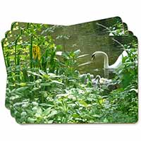 Swan and Baby Cygnets Picture Placemats in Gift Box