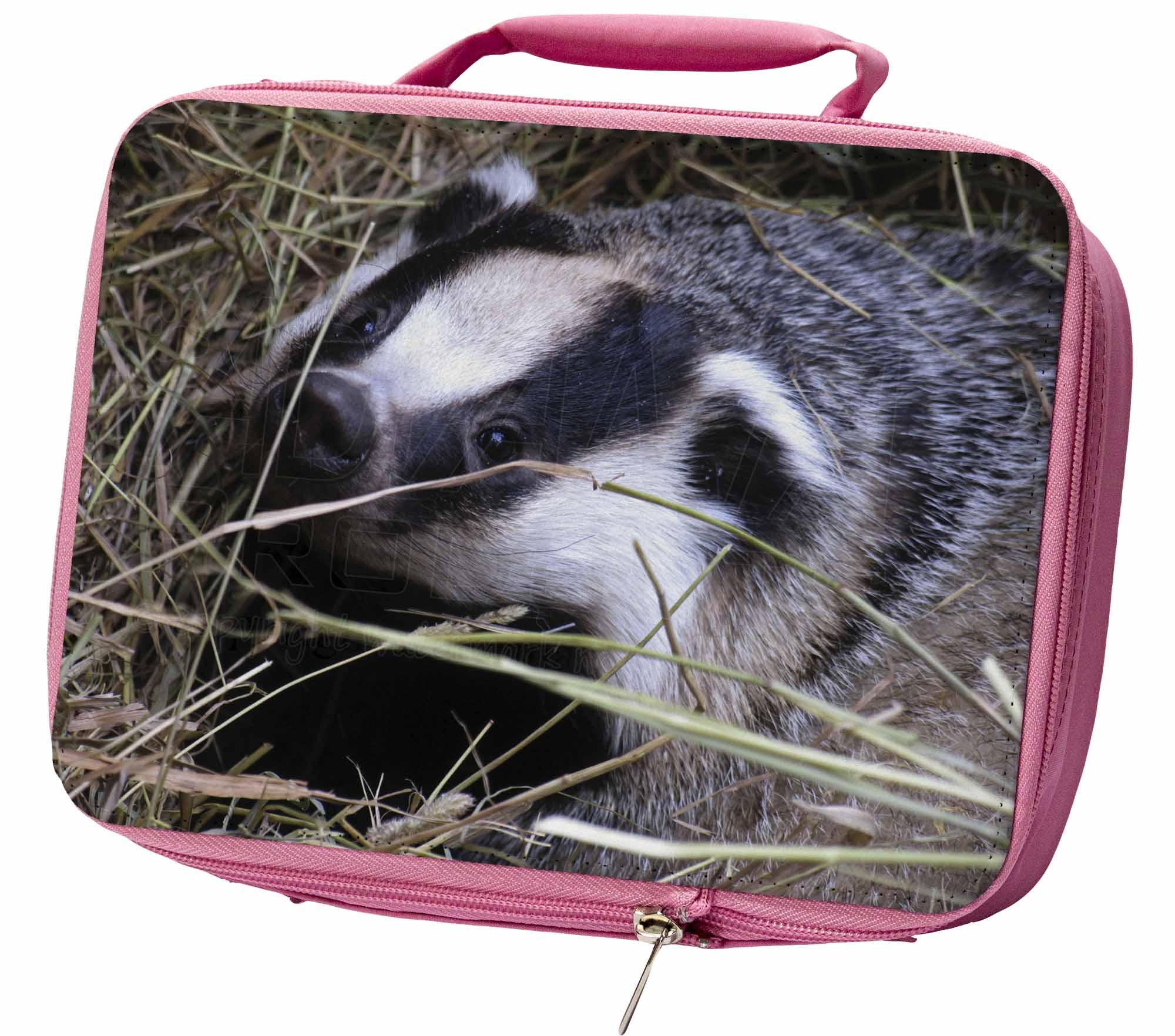 TASSO TRA LA PAGLIA ERMETICA rosa scatola del pranzo per scuola borsa, aba-1lbp