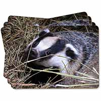 Badger in Straw Picture Placemats in Gift Box