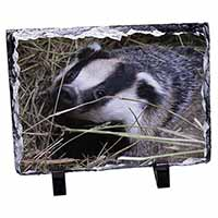 Badger in Straw Photo Slate Photo Ornament Gift