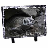 Badger-Stop Badgering Me! Photo Slate Photo Ornament Gift