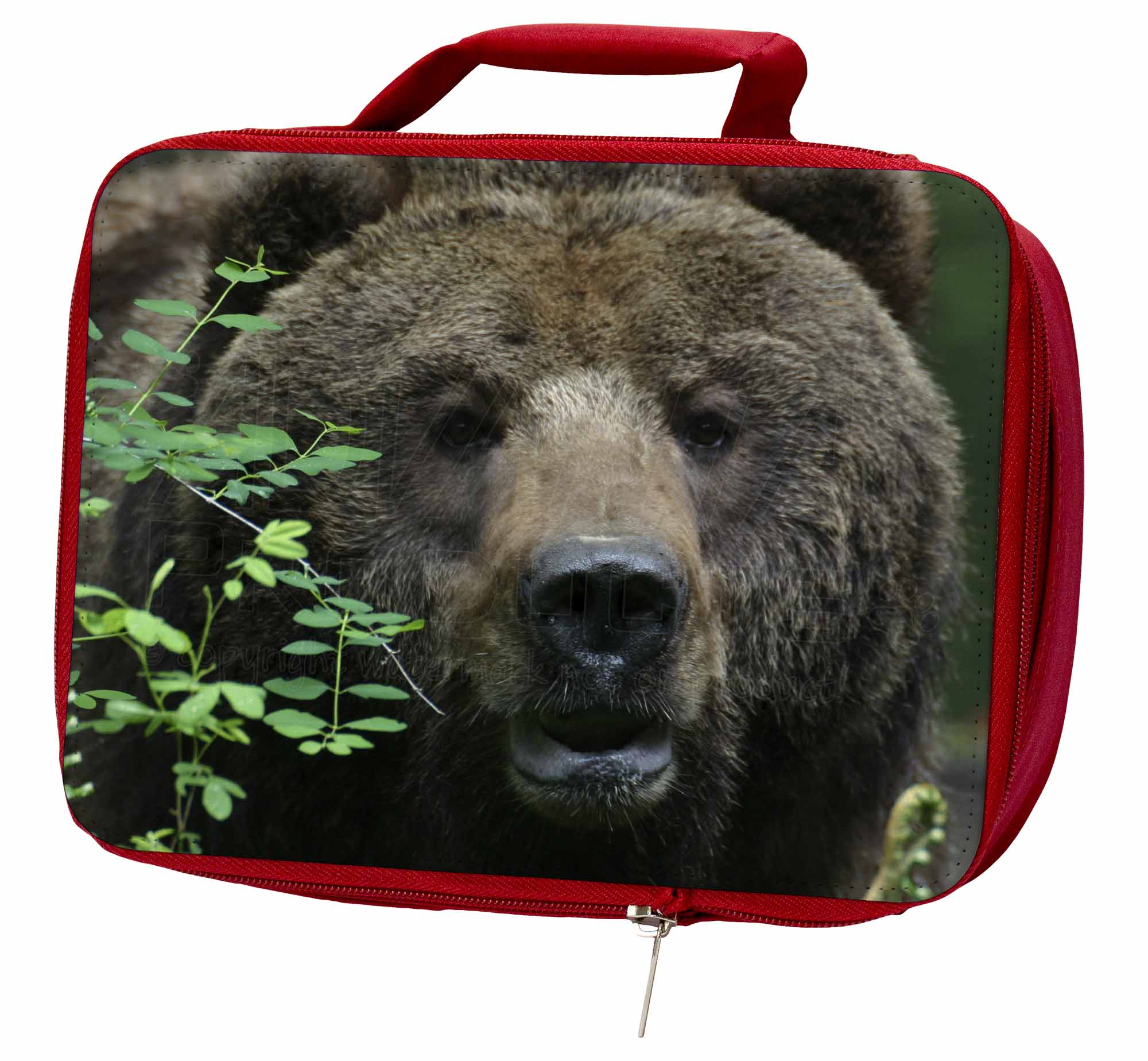 Beautiful Brown Bear Insulated Lunch Red School Lunch Insulated Box/Picnic Bag, ABE-2LBR b17fff