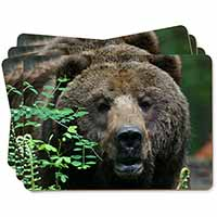 Beautiful Brown Bear Picture Placemats in Gift Box
