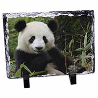 Beautiful Panda Bear Photo Slate Photo Ornament Gift