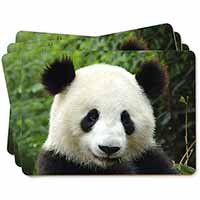 Face of a Giant Panda Bear Picture Placemats in Gift Box