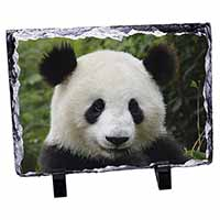Face of a Giant Panda Bear Photo Slate Christmas Gift Idea