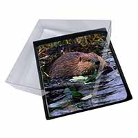 4x River Beaver Picture Table Coasters Set in Gift Box