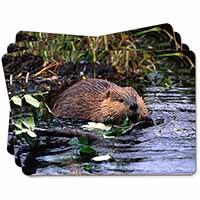 River Beaver Picture Placemats in Gift Box