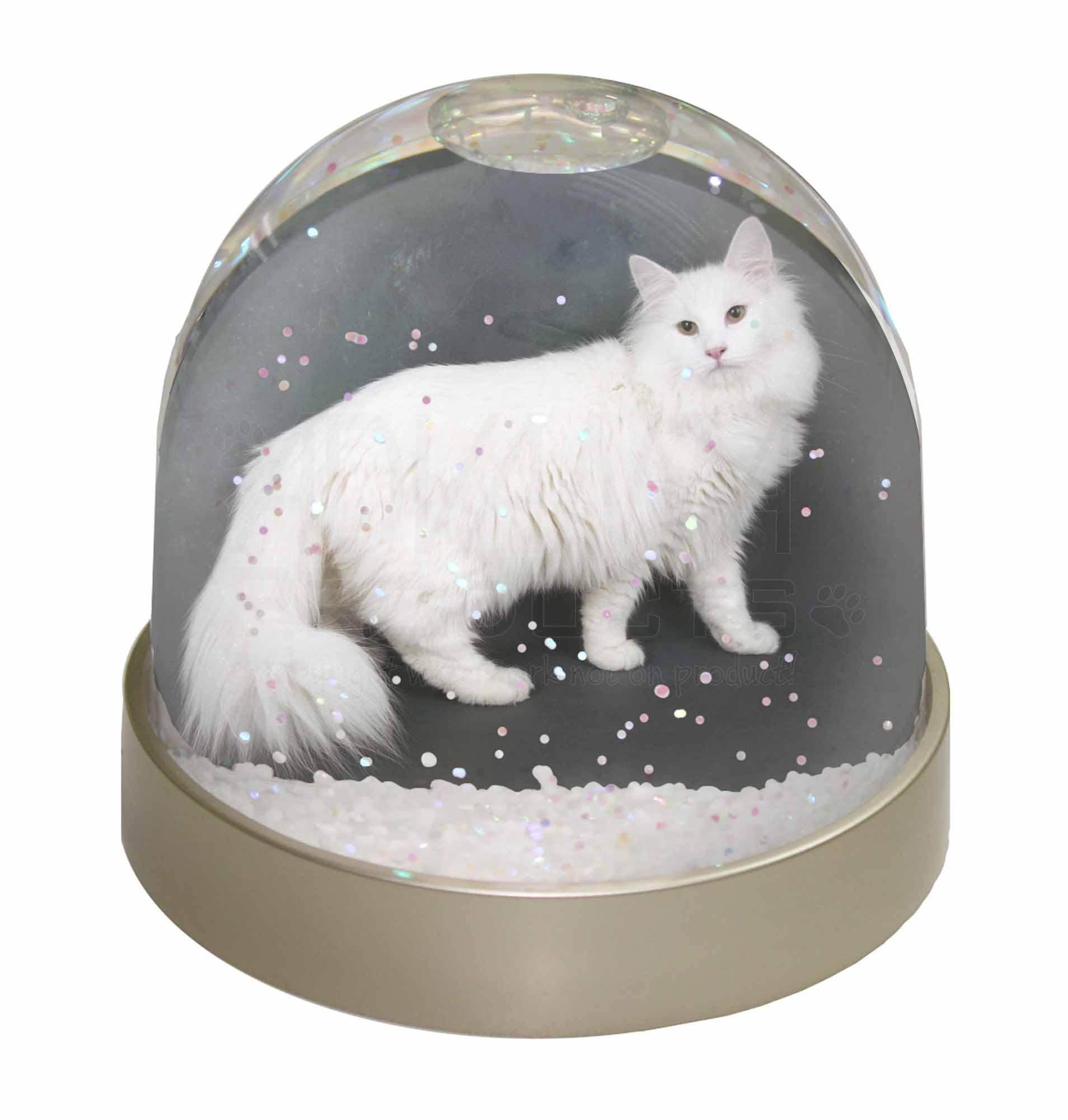 Bianco norvegese gatto della foresta foto neve waterball for Gatto della foresta norvegese