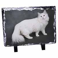 White Norwegian Forest Cat Photo Slate Photo Ornament Gift