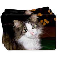 Beautiful Tabby Cat Picture Placemats in Gift Box