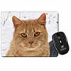 Pretty Ginger Cat Computer Mouse Mat Christmas Gift Idea