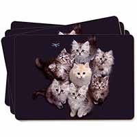 Cute Kittens+Dragonfly Picture Placemats in Gift Box