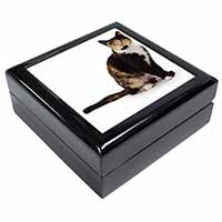 Tortoiseshell Cat Keepsake/Jewel Box Birthday Gift Idea