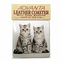 Silver Tabby Kittens Single Leather Photo Coaster Perfect Gift