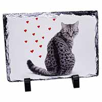 Silver Tabby Cat with Red Hearts Photo Slate Christmas Gift Idea