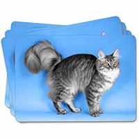 Silver Maine Coon Cat Picture Placemats in Gift Box
