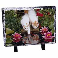 Turkish Van Cats by Fish Pond Photo Slate Photo Ornament Gift