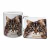 Face of Tortoiseshell Cat Mug+Coaster Christmas/Birthday Gift Idea