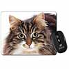 Face of Tortoiseshell Cat Computer Mouse Mat Christmas Gift Idea