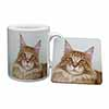 Pretty Face of a Ginger Cat Mug+Coaster Christmas/Birthday Gift Idea