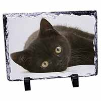 Stunning Black Cat Photo Slate Photo Ornament Gift