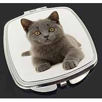 British Blue Kitten Cat Make-Up Compact Mirror Birthday Gift Idea