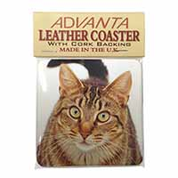 Face of Brown Tabby Cat Single Leather Photo Coaster Perfect Gift