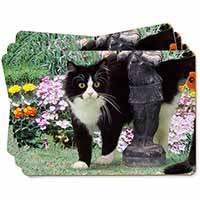 Black and White Cat in Garden Picture Placemats in Gift Box