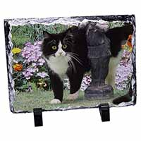 Black and White Cat in Garden Photo Slate Photo Ornament Gift